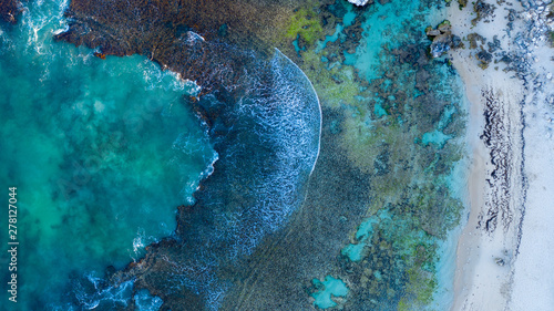Temperate Coral Reef