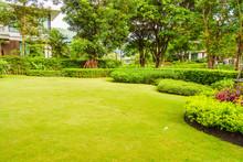 Path In Lush And Beautiful Gar...