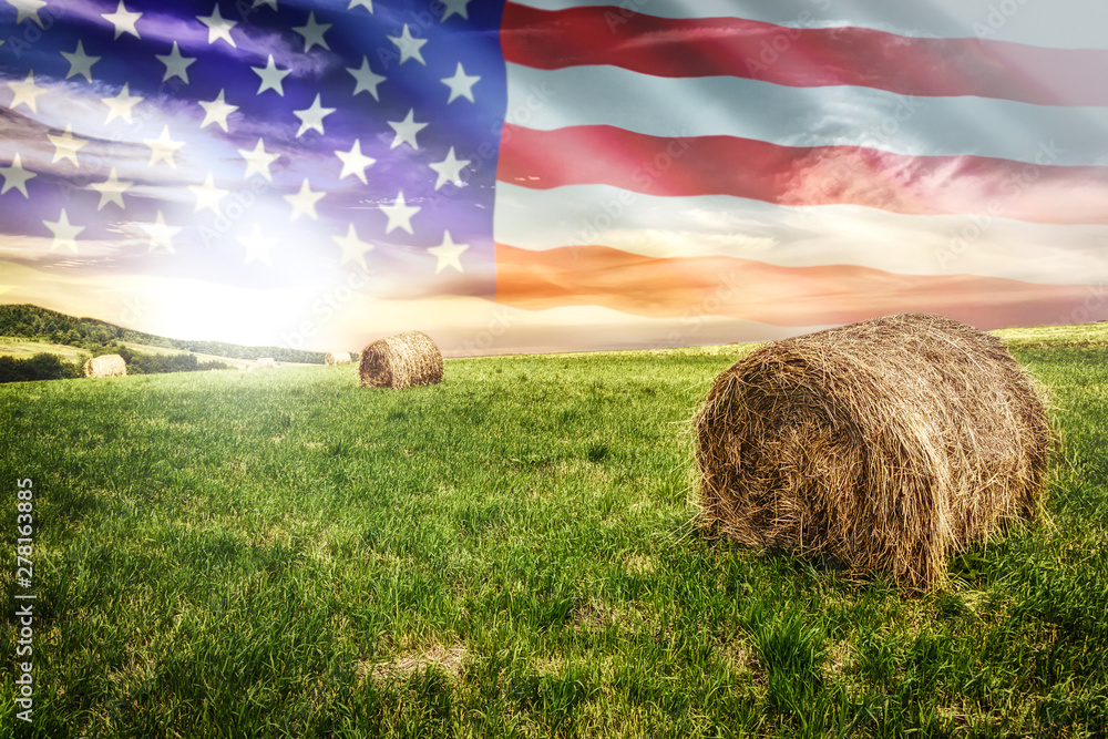 Fototapety, obrazy: National agricultural industry concept - idyllic farm field with hay bales on on the background of the USA flag (mixed).