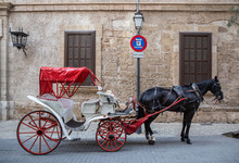 White Carriage With One Horse For Tourists