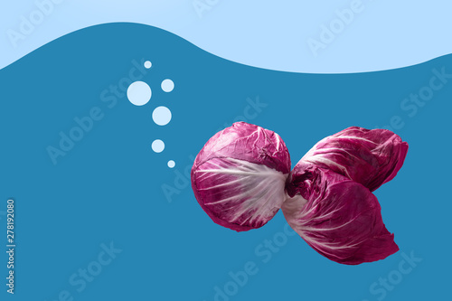 red radicchio in the shape of fish, conceptual image
