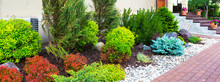 Landscape Design In Home Garden, Beautiful Landscaping Of House. Panoramic View Of Landscaped Area With Plants In Yard Or Backyard.