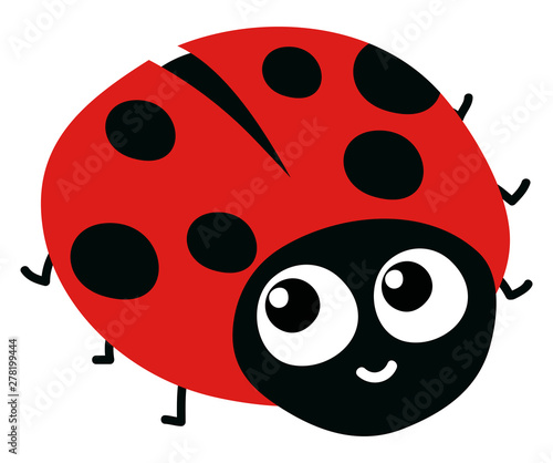 Fototapeta Cute ladybug, illustration, vector on white background