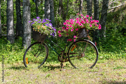 Fototapeten Natur View of a bicycle decorated with flowers in Kosterhavet National Park, Sweden.