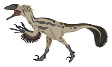Deinonychus, Illustration, Vec...
