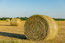Large Round Hay Bales In Field At Sunset