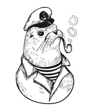 Sea Lionl With A Smoking Pipe ...