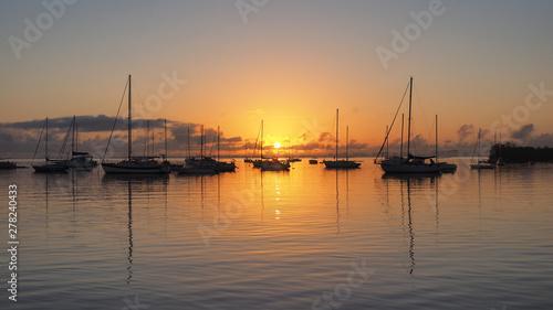 Canvas Print Sunrise over Dinner Key Marina in Coconut Grove, Miami, Florida.