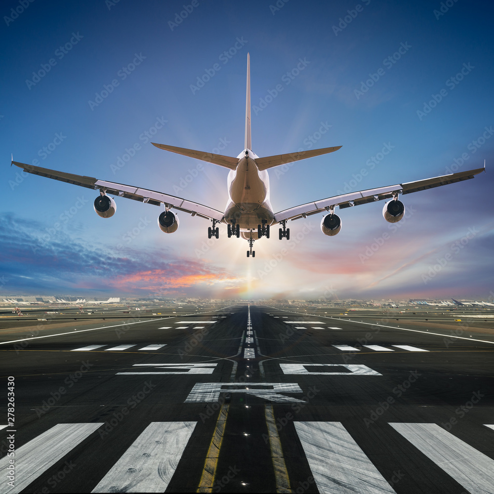Fototapety, obrazy: Airplane landing at the airport, back view.