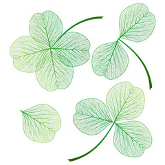 Fototapeta Minimalistyczny Set leaf clover . Vector illustration. EPS 10