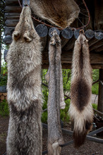Furs And Pelts On Display In N...