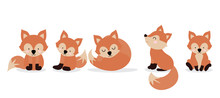 Cute Fox Character Are Standin...