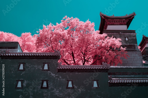 Canvas The Summer Palace of Beijing,in infrared light