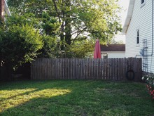 American Summer Backyard With Umbrella And Fence And Green Grass