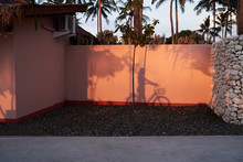 Tropical View Of Shadow Of Girl With Bike In A Venue In Summer.