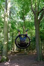 Swing In The Woods