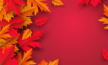 Autumn Leaves On Red Background Design With Copy Space Vector Illustration
