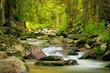 canvas print picture - Langzeitbelichtung Gewässer im Erzgebirge an der Bockau, Fluss mit Steinen, Wald, Lichtstimmung