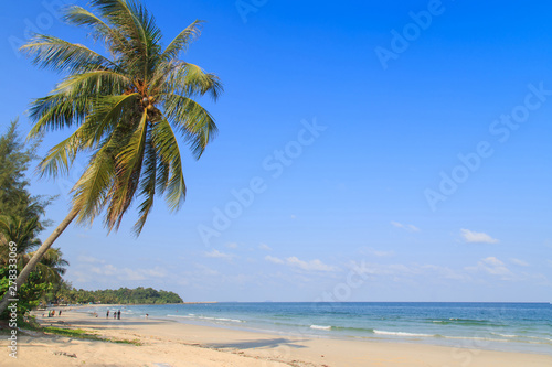 Spoed Foto op Canvas Oceanië The beach and blue sky/Beautiful beach and tropical sea/View of nice tropical beach with palm tree/Holiday and vacation/