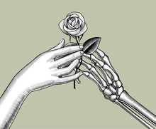 The Skeleton's Hand Gives A White Rose To The Female Hand