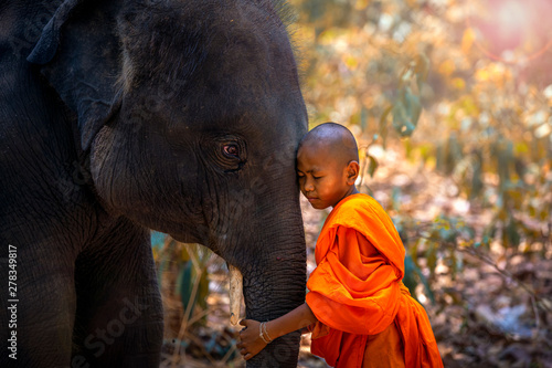 Novices or monks hug elephants Fotobehang