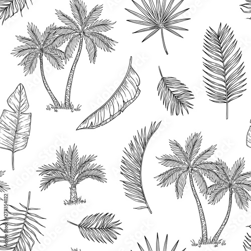 obraz lub plakat Palm tree seamless background. Tropical coconut palm, exotic island. Vintage hand drawing abstract floral summer vector print pattern. Pattern seamless tree palm leaf background illustration graphic