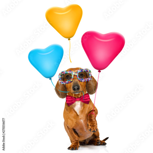 Cadres-photo bureau Chien de Crazy happy birthday valeintines dog