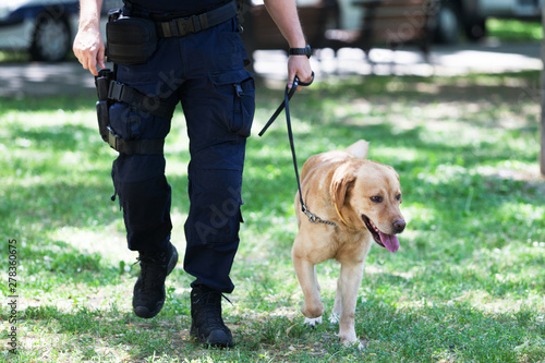 Vászonkép Policeman with police dog on duty
