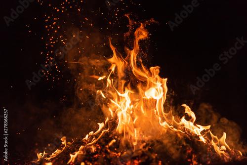 Obraz fire flames with sparks on black background - fototapety do salonu