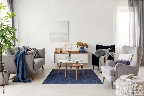 Superb Elegant White Grey And Blue Living Room Interior With Home Interior And Landscaping Ologienasavecom