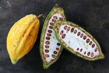 Full Cacao Pod And One Half Cut