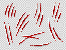 Claws Scratches. Animal Claw Tracks, Cat Or Tiger, Bear Or Lion Attack Nails Scratches. Thriller Horror, Halloween Monster Vector Set