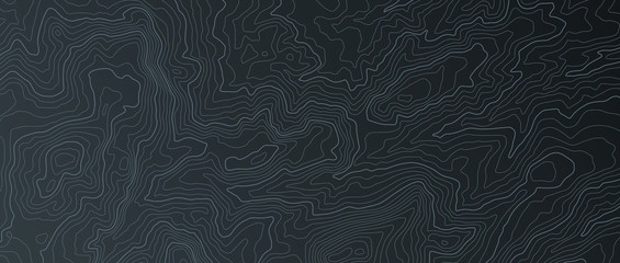 Terrain map. Contours trails, image grid geographic relief topographic contour line maps cartography texture, vector illustration