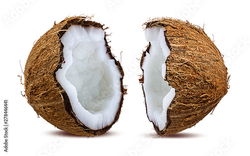 Foto auf AluDibond Palms coconuts isolated on the white background