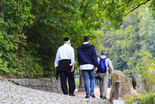 Older Hasidic Jews Walk In The...