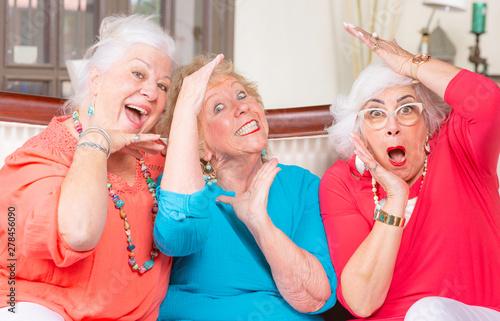 Three Senior Ladies Posing Canvas Print