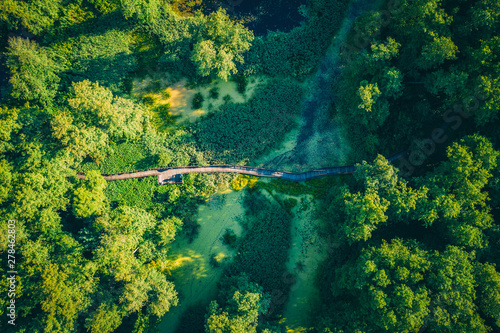 Poster Rivière de la forêt Aerial top view of wooden footbridge pathway over marshy or swampy river with vegetation thickets and green forest, summer travel
