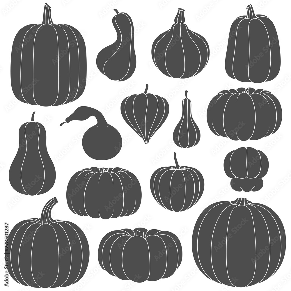 Fototapeta Set of black and white silhouettes with pumpkins of different shapes. Isolated vector objects on white background.