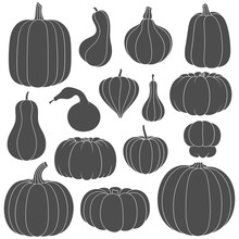 Set Of Black And White Silhouettes With Pumpkins Of Different Shapes. Isolated Vector Objects On White Background.