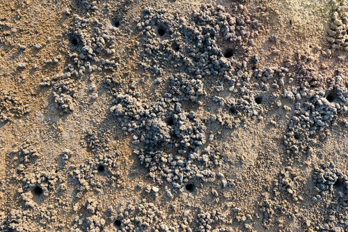 Photo Texture of sand,top view