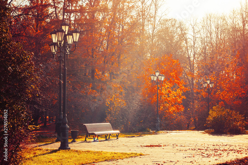 Cadres-photo bureau Automne Autumn September morning landscape. Bench at the autumn alley under colorful deciduous autumn trees.