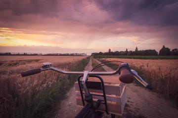 Vélo vintage sur un chemin ...