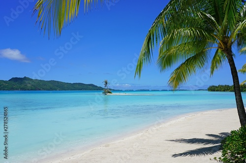 Fotografia View of a tropical landscape with palm trees, white sand and the turquoise lagoo