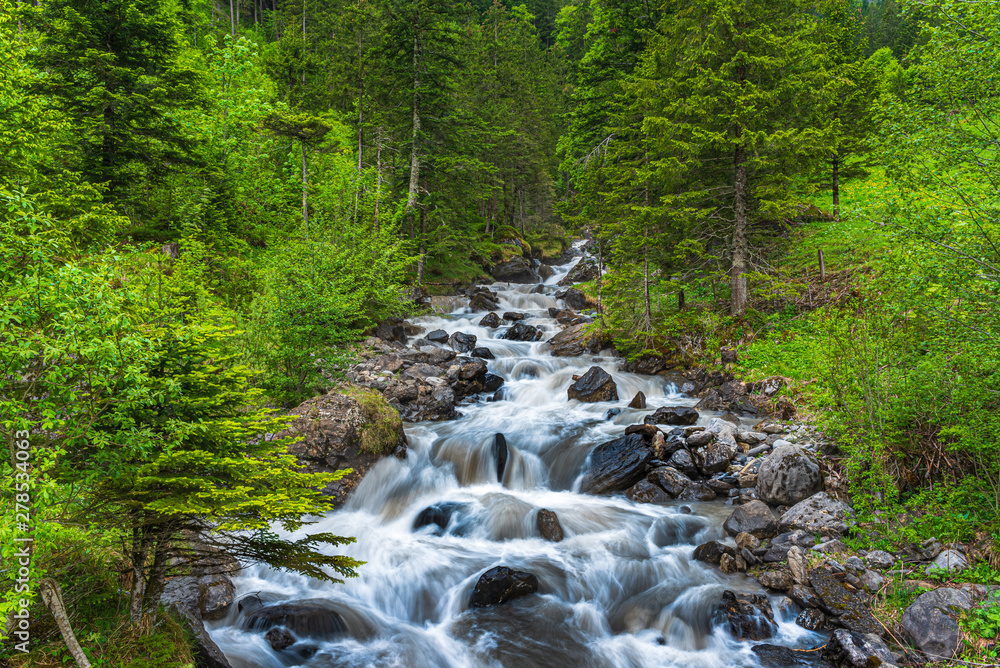 Fototapety, obrazy: Wild part of the Alpbach river close to Kandersteg