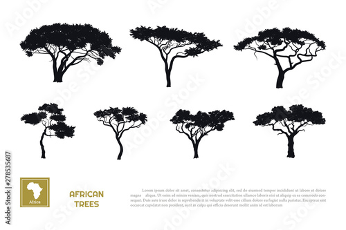 Photo Black silhouettes of african trees on white background