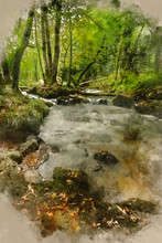 Digital Watercolour Painting Of Beautiful Landscape Of River Flowing Through Lush Forest Golitha Falls In England