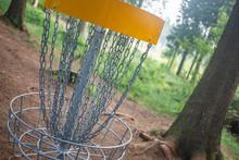 Disc Golf Basket Detail