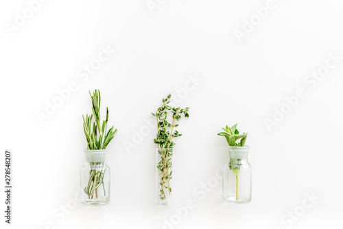 Alternative medicine with medicinal herbs on white background top view mock up Canvas Print
