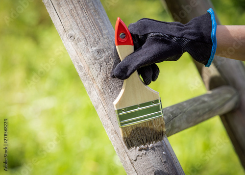 Fotografie, Obraz  Hand with glove holding brush and painting on the surfaces with fresh protective