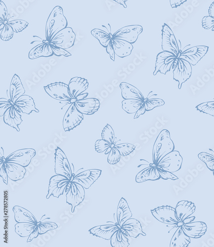 Fototapeta  Butterfly. Vector drawing